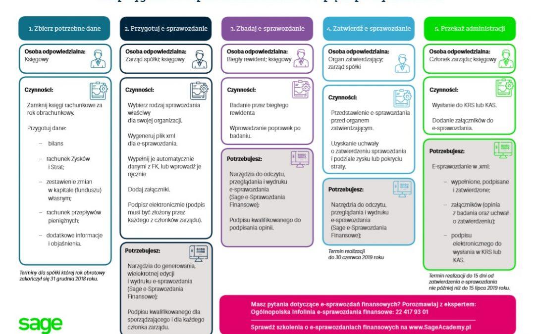 5 kroków do e-Sprawozdań